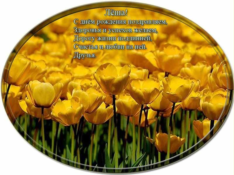 posdravljaem_aleksei-kovalev