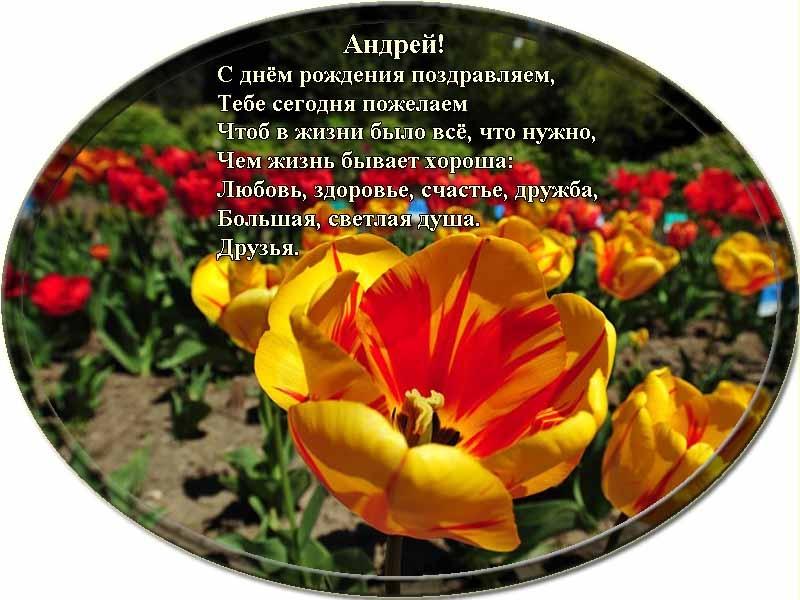 posdravljaem_andrey_korenevsky
