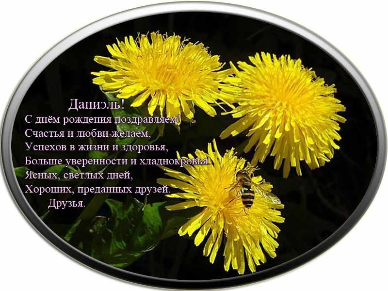 posdravljaem_daniel_kalashnikov