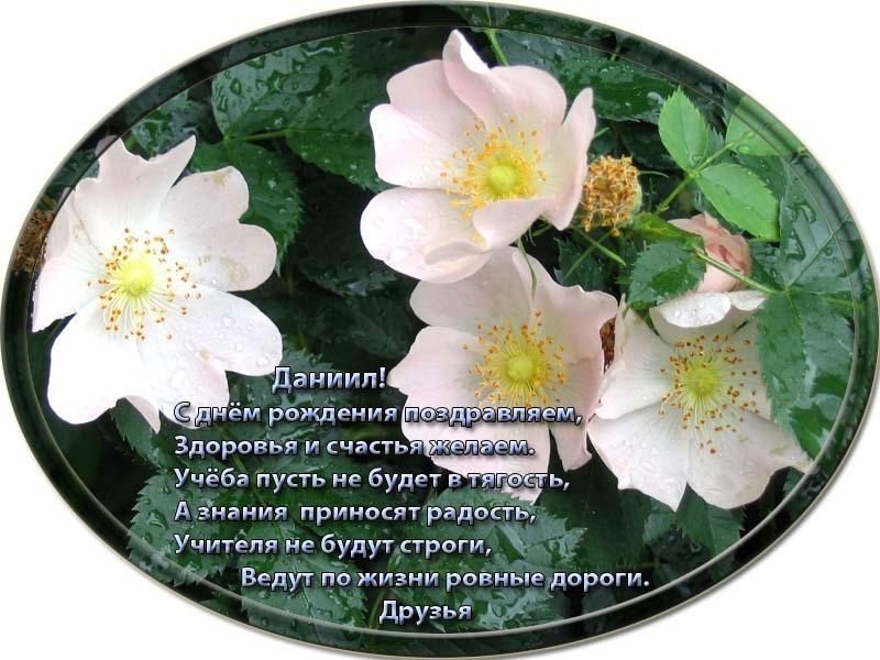 posdravljaem_daniil-lavrinenko