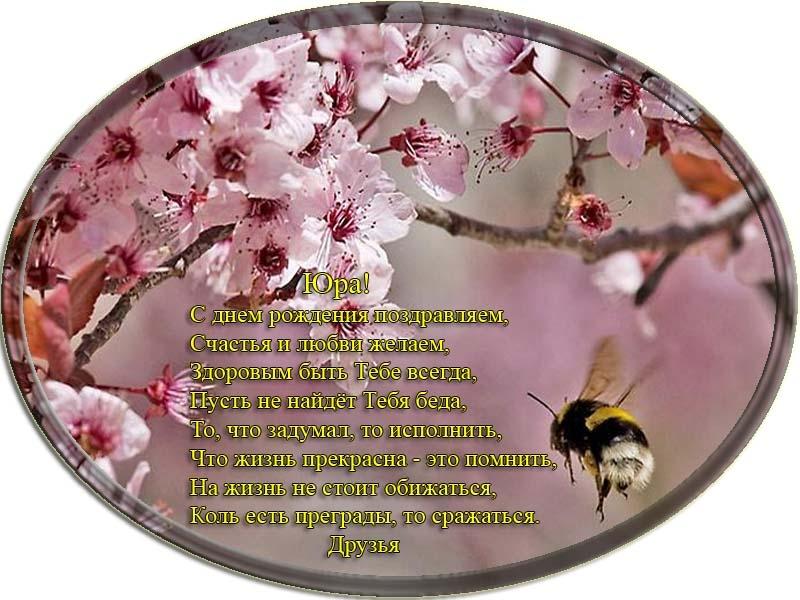 posdravljaem_jura-kuznetsov