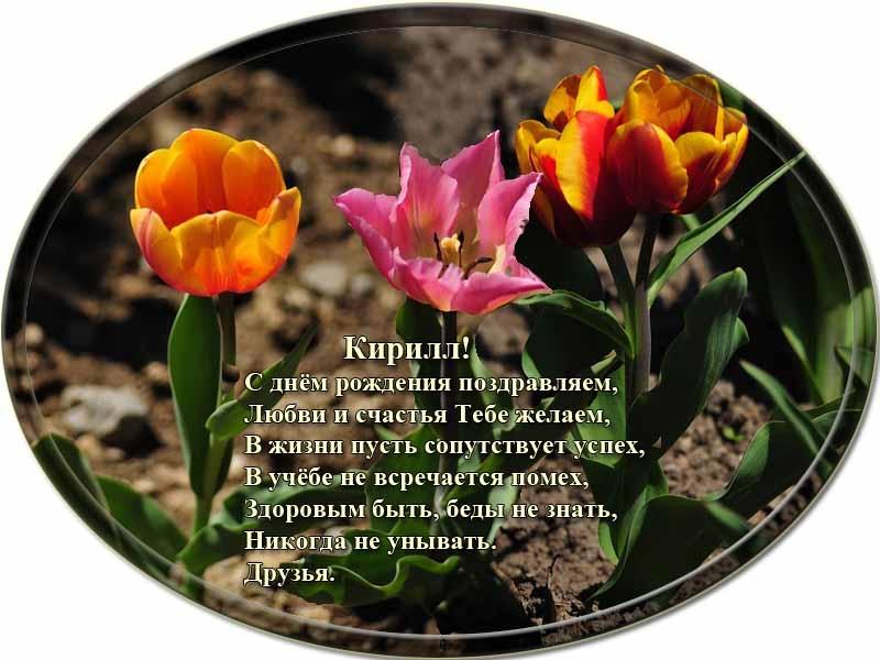 posdravljaem_kirill_beljakov