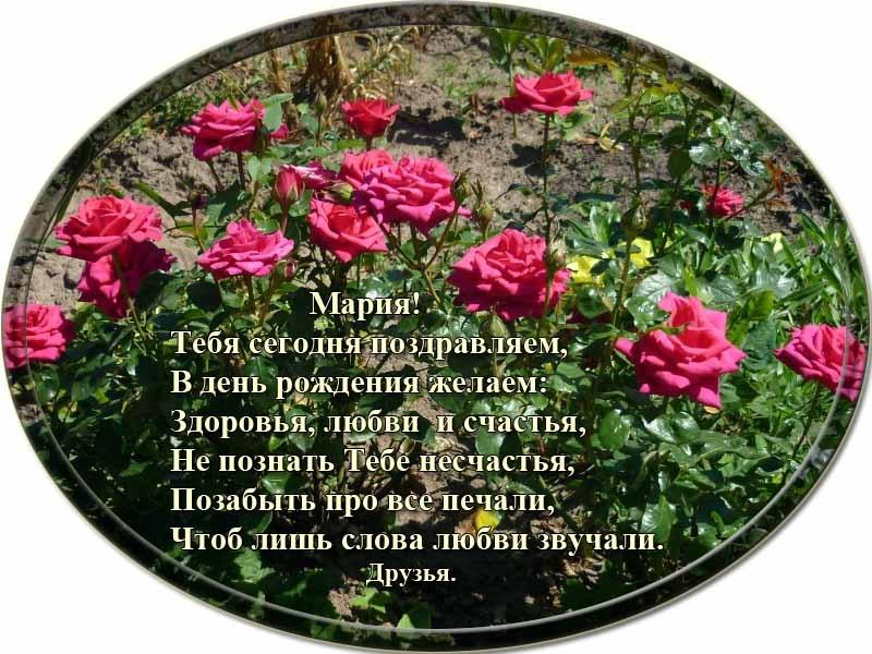 posdravljaem_maria-sigal