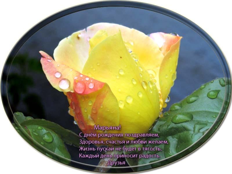 posdravljaem_marjana-voronina
