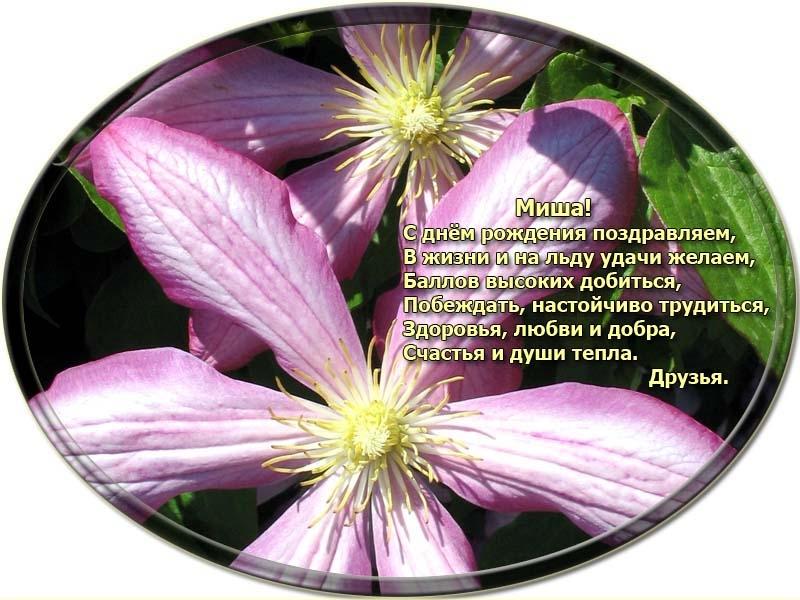 posdravljaem_mihhail-sokolov