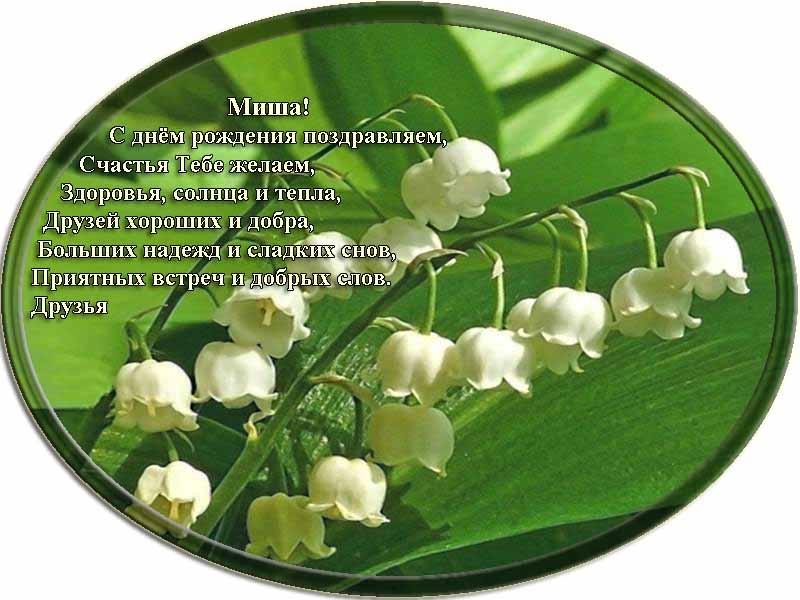 posdravljaem_misha-lebedev