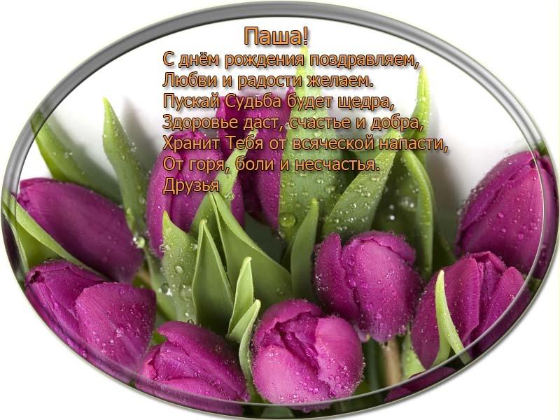 posdravljaem_pasha-drozdov
