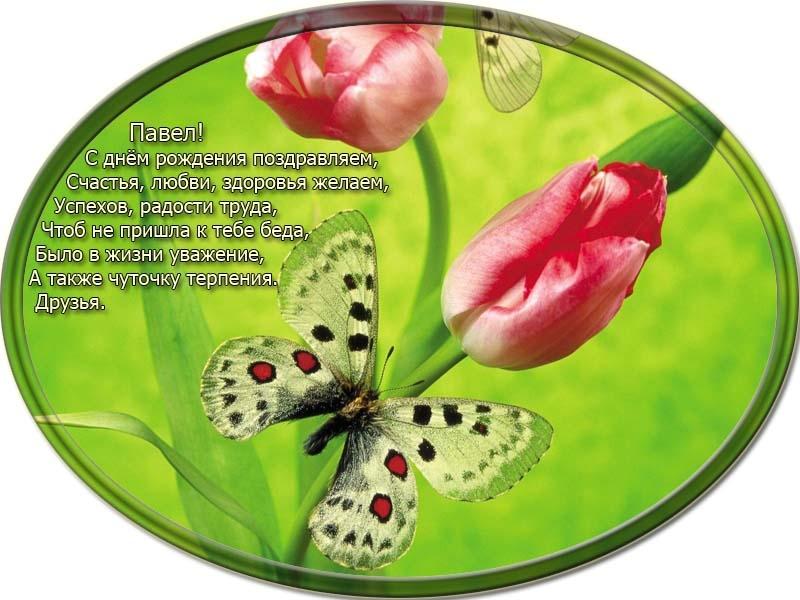 posdravljaem_pavel-malev