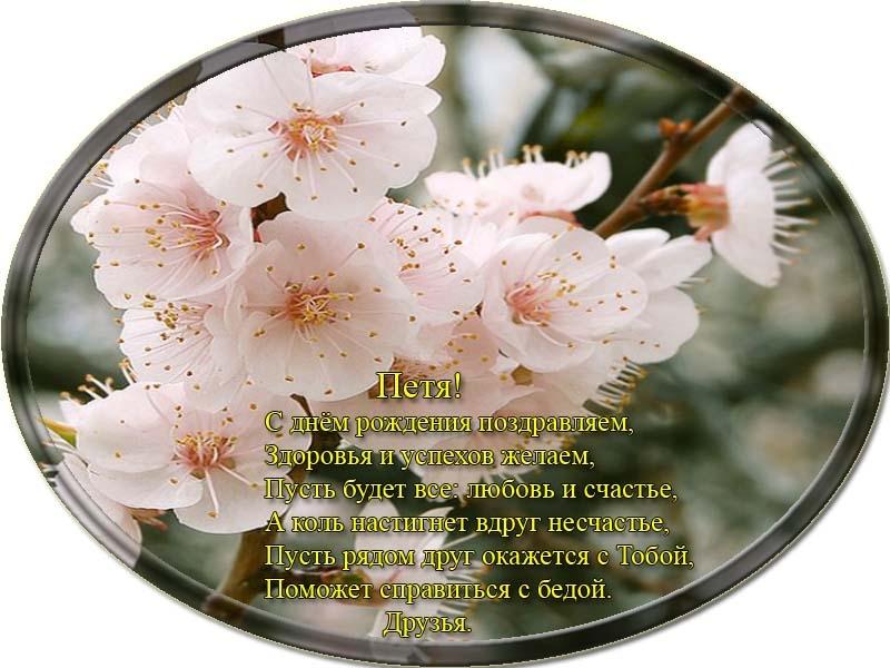 posdravljaem_pjotr-beloshev