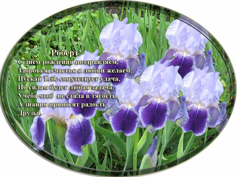 posdravljaem_robert-kossinov