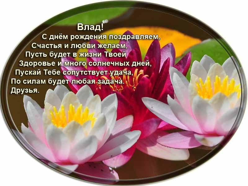 posdravljaem_vlad_shutov
