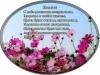 posdravljaem_nikita_jefremov
