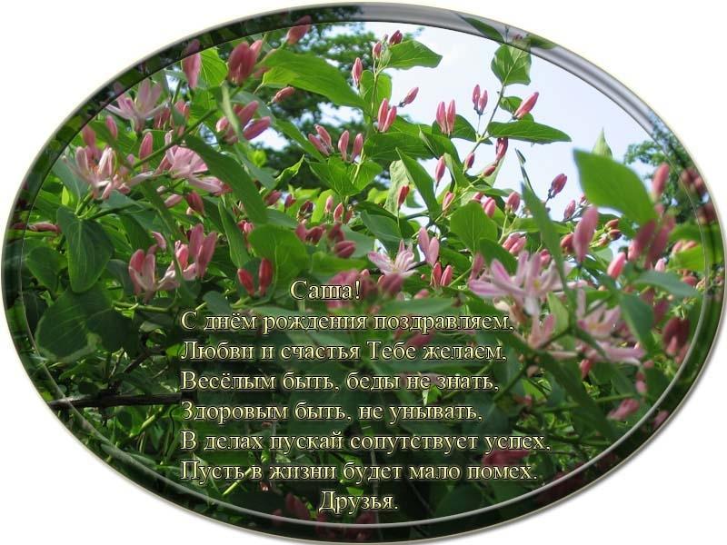 posdravljaem_aleksandr-beldsinski