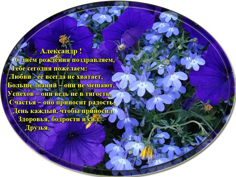posdravljaem_aleksandr-toome