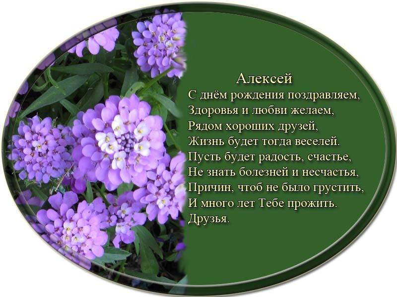 posdravljaem_aleksei-olovjanishnikov