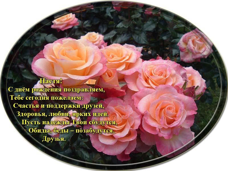posdravljaem_anastasia-bashkir
