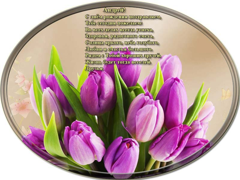 posdravljaem_andrei-belogortsev