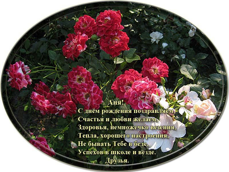 posdravljaem_anja-timchenko