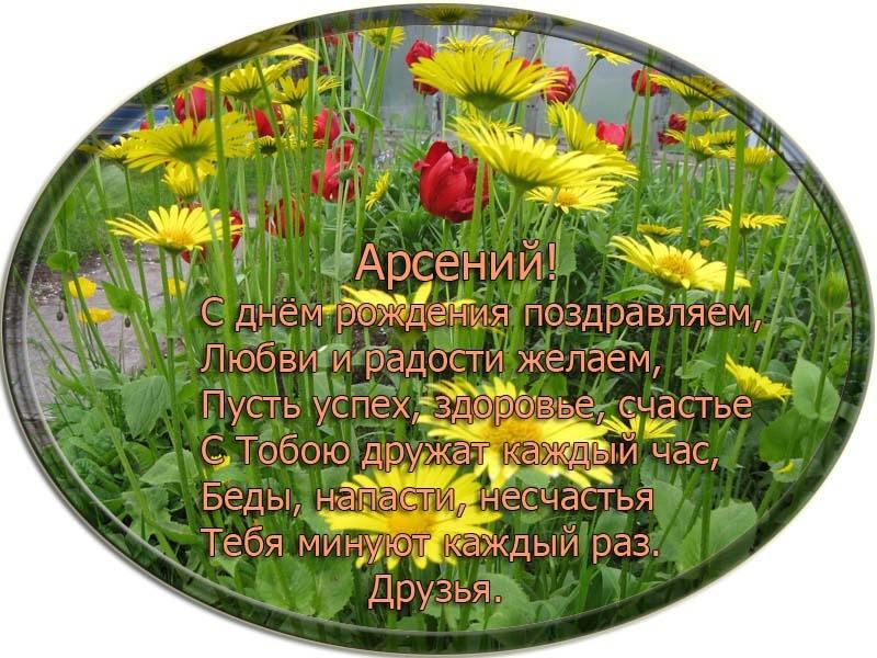 posdravljaem_arseni-aleksei-bubnov