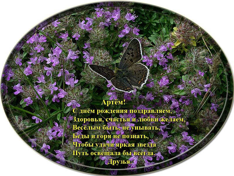 posdravljaem_artjom-koltsov