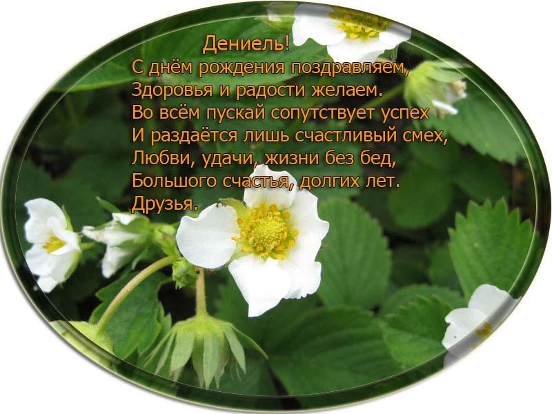 posdravljaem_deniel-dmitriev