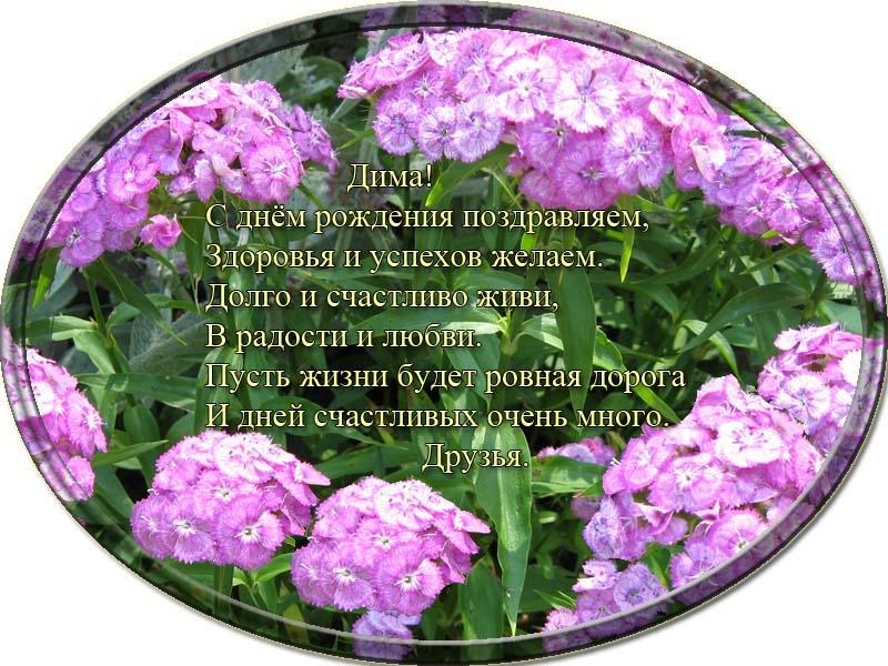 posdravljaem_dmitri-demchenko