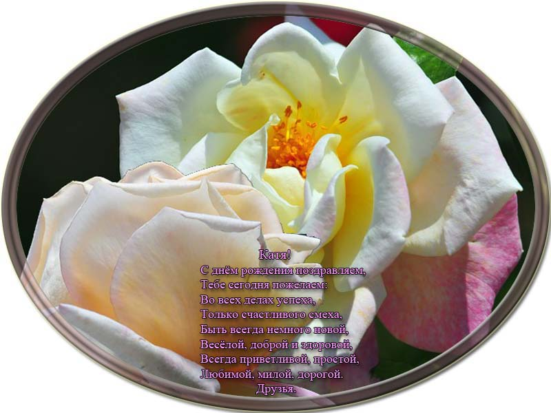 posdravljaem_ekaterina-proshina