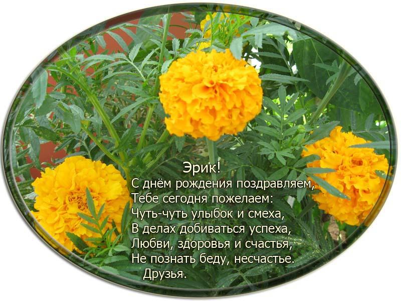 posdravljaem_erik-sikk