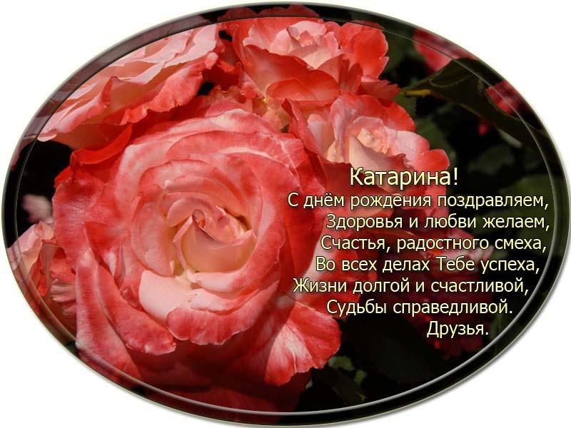 posdravljaem_katarina-belousova