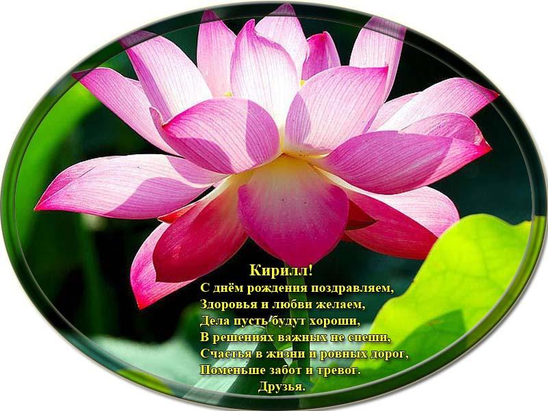 posdravljaem_kirill-pirog