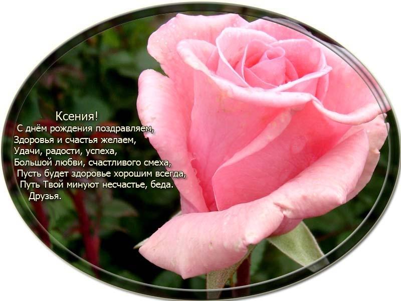 posdravljaem_ksenija-shved