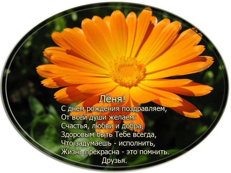 posdravljaem_leonid-sheshukov