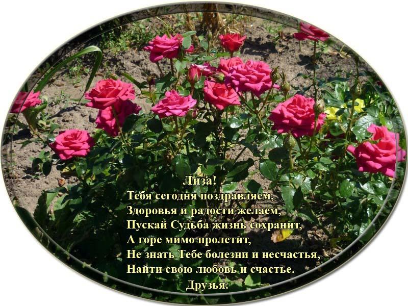 posdravljaem_liza-shumskaja