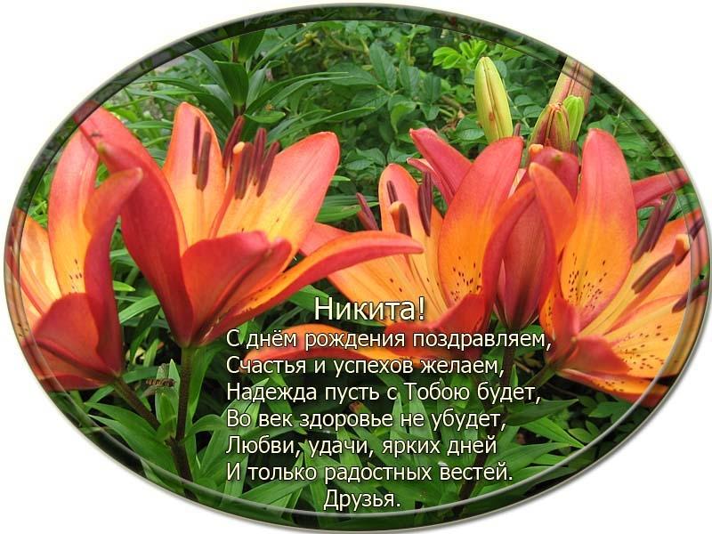 posdravljaem_nikita-jefremov