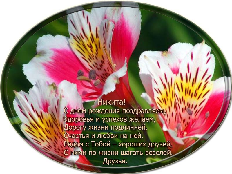 posdravljaem_nikita-vasiljev