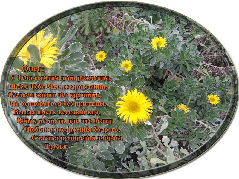 posdravljaem_oleg-banketov