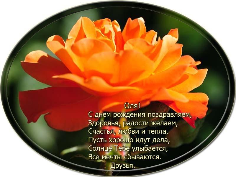 posdravljaem_olja-tkachenko
