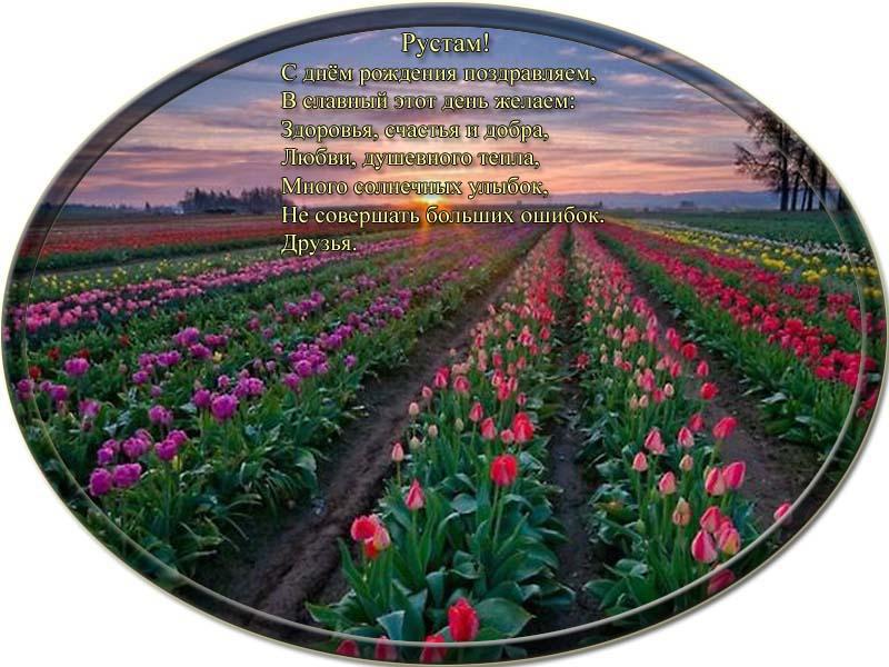 posdravljaem_ruatam-rahimgulov