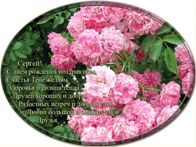 posdravljaem_sergey-nataltsenko