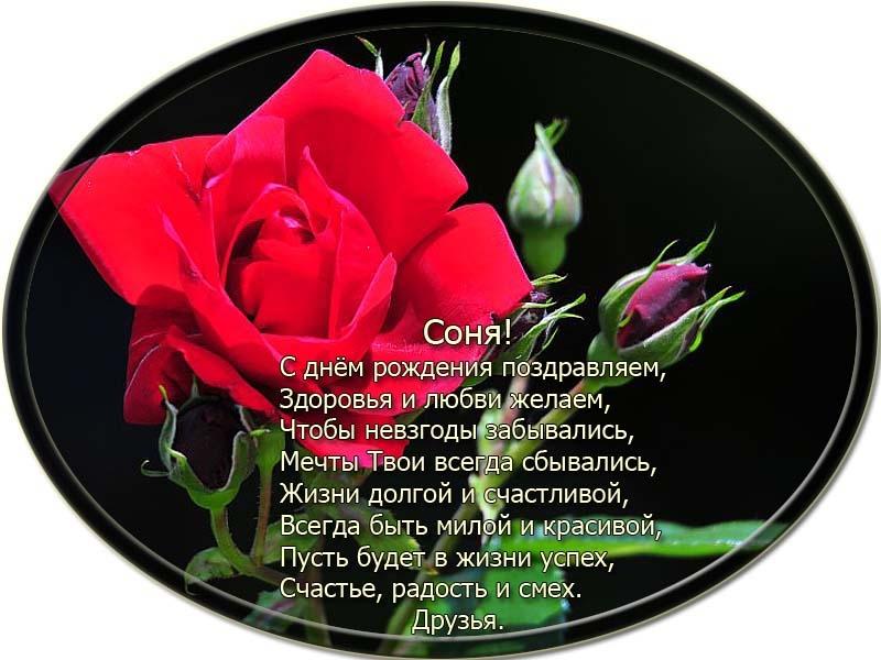 posdravljaem_sonya-kipjatkova