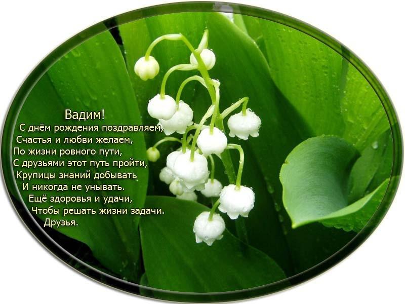 posdravljaem_vadim-gnutov