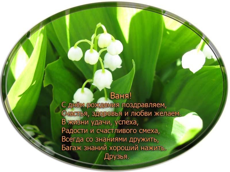 posdravljaem_vanja-kuzovkin