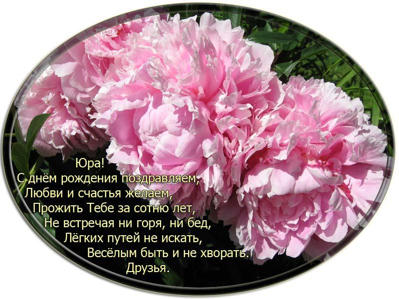 posdravljaem_yuri-krutii