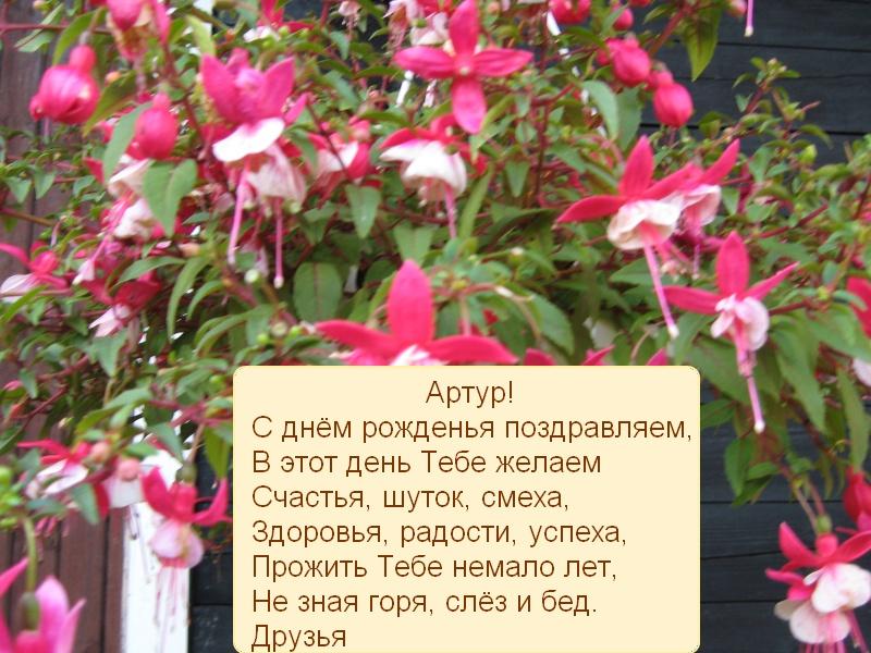 posdravljaem_artur_kar