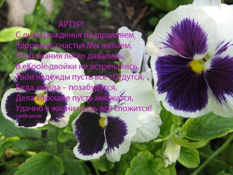 posdravljaem_artur_vlad