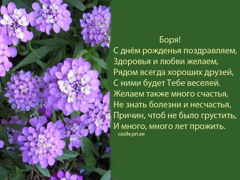 posdravljaem_boris_ge