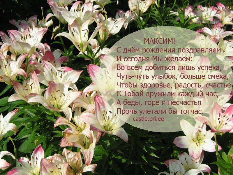 posdravljaem_maksim_kash