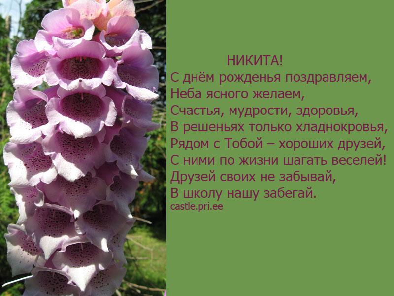 posdravljaem_nikita_4o