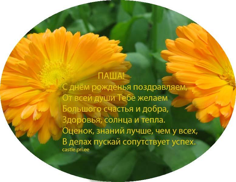 posdravljaem_pasha_mal