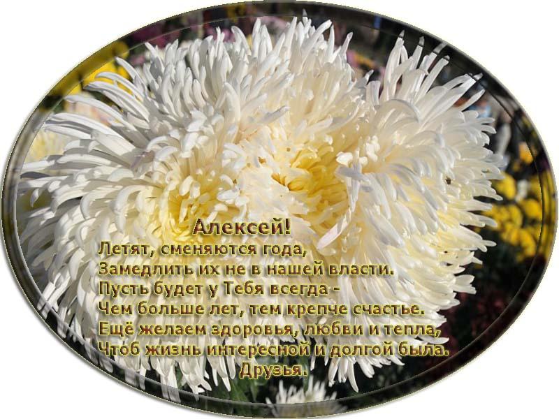 posdravljaem_aleksej-jakovlev